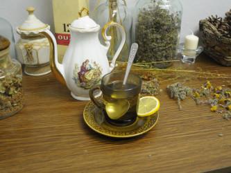 имбирный чай мятой для похудения