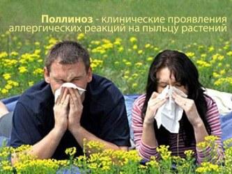 Сенная лихорадка: симптомы и лечение