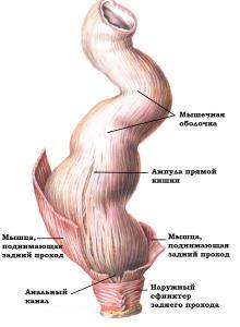 Диета при раке прямой кишки
