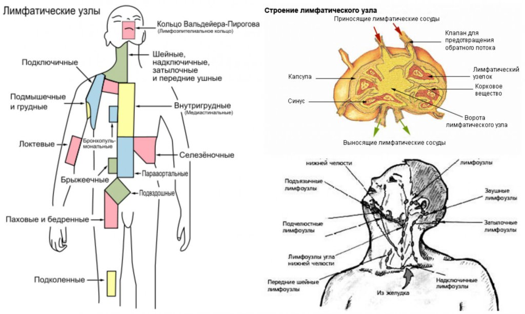 Причины воспаления лимфоузлов
