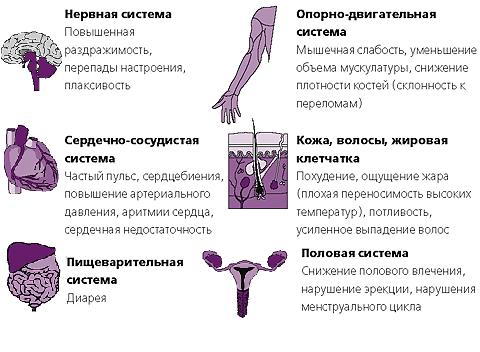 Заболевания щитовидной железы у мужчин: симптомы, лечение и профилактика