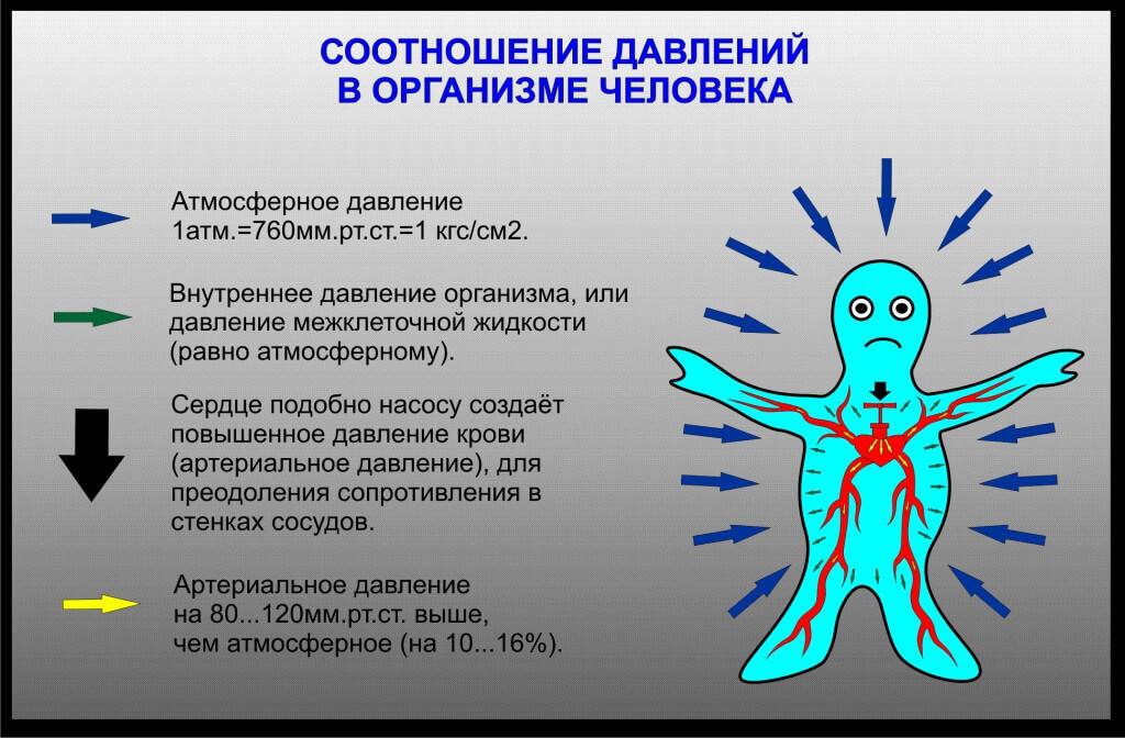 Дискинезия желчевыводящих путей гипертоническая и гипотоническая форма