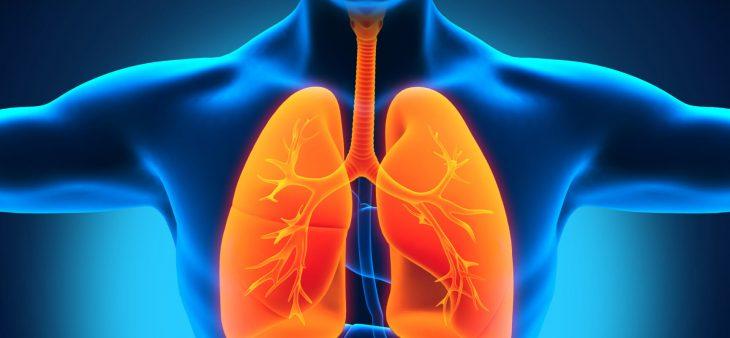поражение легких и температура при сифилисе
