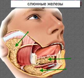 сиаладенит симптомы и лечение