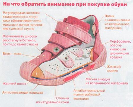 какую обувь надо покупать на первые шаги