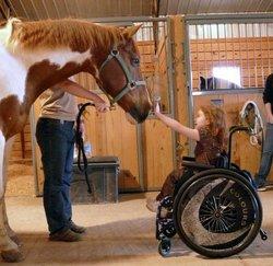 девочка в инвалидной коляске с лошадью
