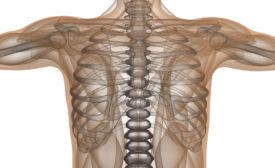 Травмы грудной клетки, переломы грудины и ребер