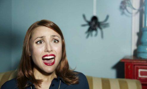 девушка боится паука