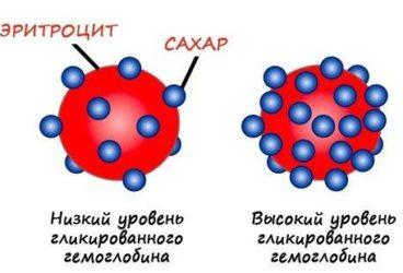 что такое гликилированный гемоглобин