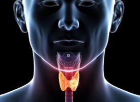 Cцинтиграфия щитовидной железы показания противопоказания методика проведения
