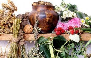 лекарственные травы при остеопорозе