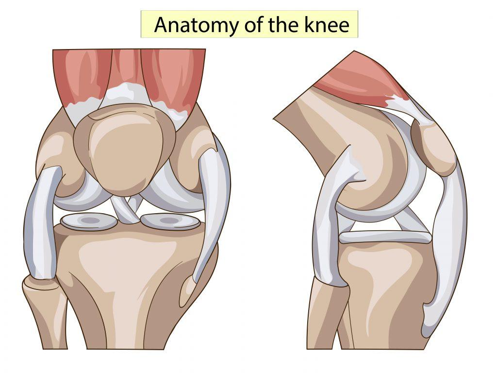 Мениск коленного сустава симптомы