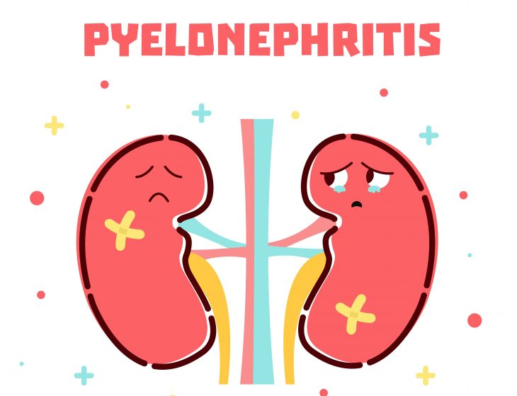 Острый пиелонефрит - симптомы, лечение и диета