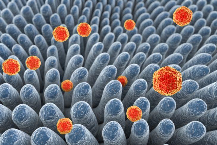 Период возможного заражения гепатит а