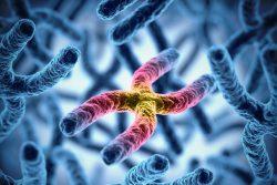 Синдром Фанкони: почему возникает и как проявляется