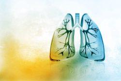 Биопсия легких и плевры: для чего и как проводят
