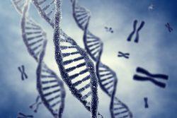 7 интересных особенностей, которые передаются с генами