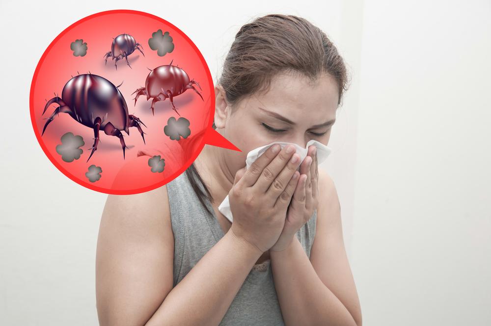 Аллергия на домашнюю пыль у ребенка