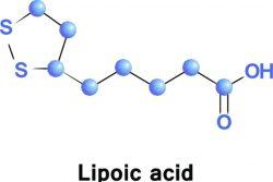 Липоевая кислота и ее влияние на печень