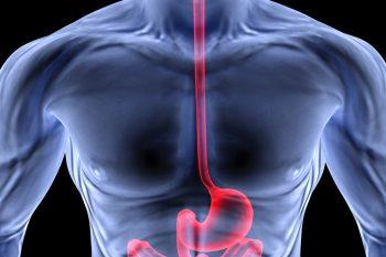 Рентгенологические методы в диагностике болезней пищеварения