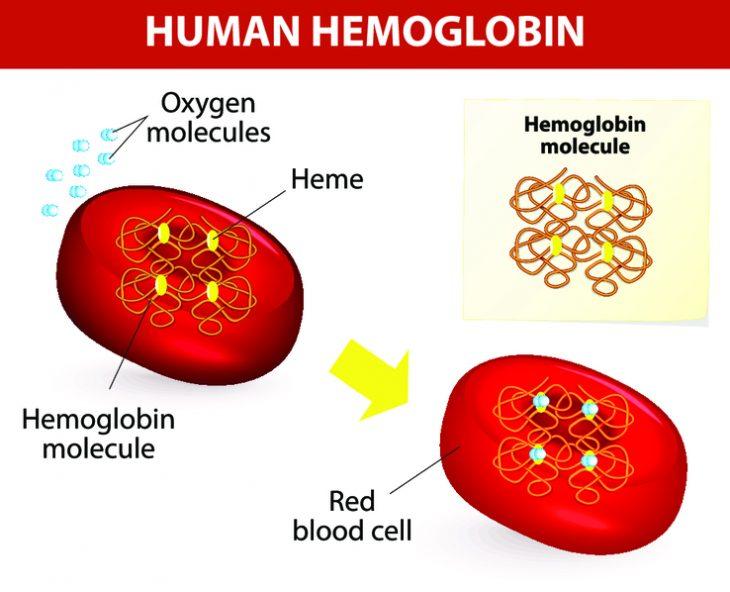 Норма гемоглобина у грудного ребенка, низкий гемоглобин и как повысить