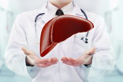 Альвеококкоз: симптомы, диагностика и лечение