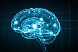 Первые симптомы проблем с головным мозгом, которые не стоит игнорировать