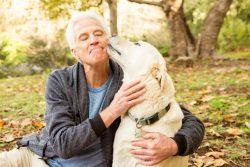 Топ-8 животных, которые оказывают благотворное влияние на здоровье человека