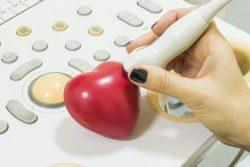 Стресс-эхокардиография: показания, противопоказания, подготовка, методика исследования