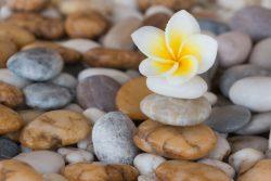 Камни и здоровье: время лечить и время собирать…
