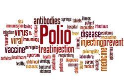 Полиомиелит — симптомы, лечение и профилактика