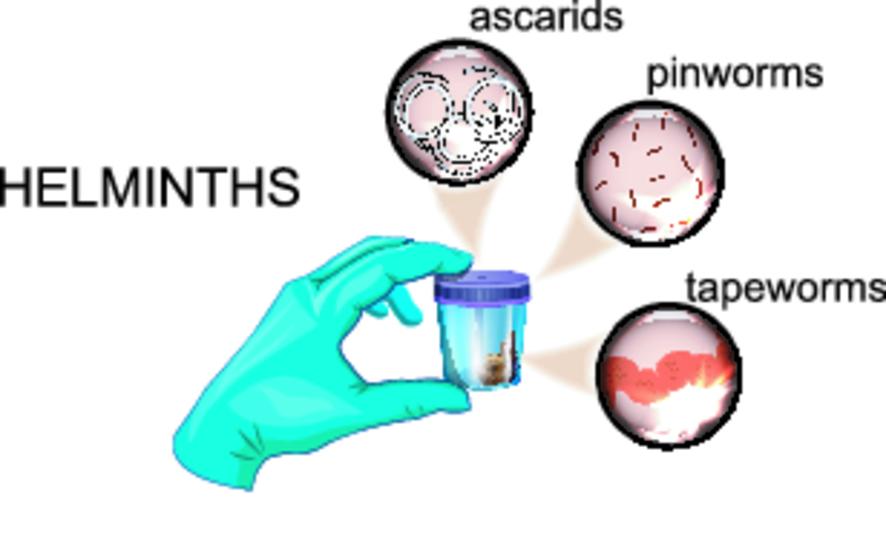анализ кала на аллергены институт питания