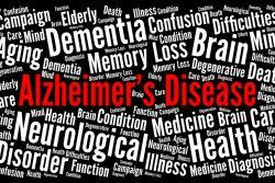 Болезнь Альцгеймера: профилактика и лечение