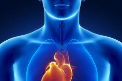 Декстрокардия – когда сердце справа