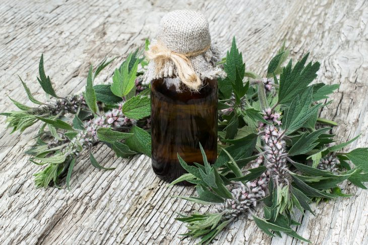 Растительные препараты успокаивающие нервную систему