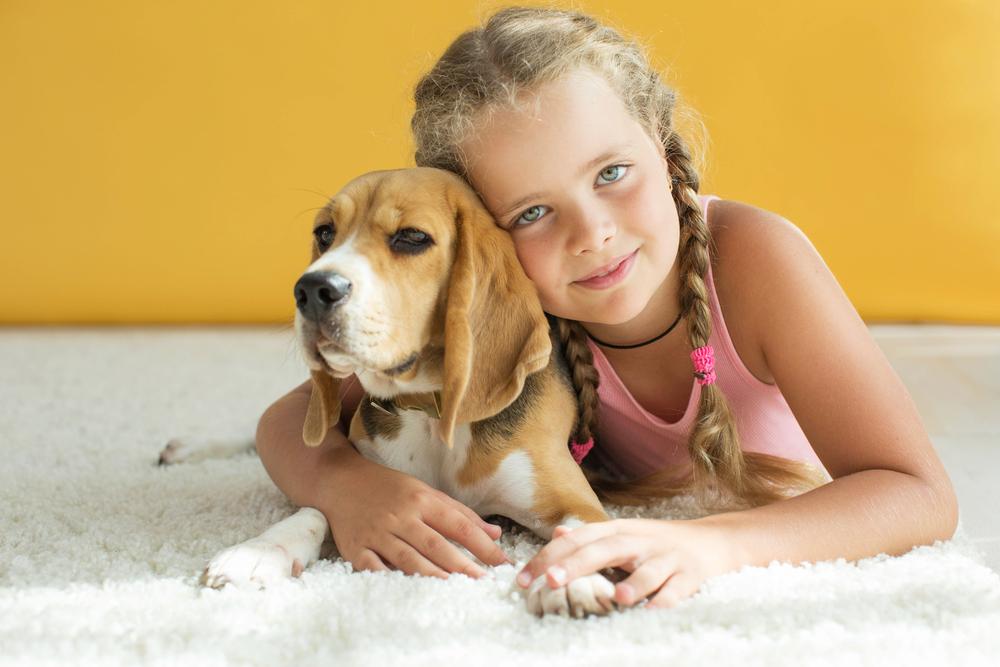 Может ли собака заразиться от человека простудой и гриппом?