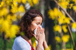 Аллергия на пыльцу — что делать?