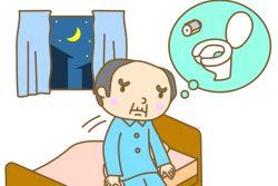 Частое мочеиспускание по ночам: всегда ли вызывается циститом, причины этого симптома