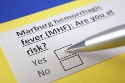 Лихорадка Марбург: симптомы, лечение, профилактика