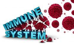 Вторичный иммунодефицит у детей: причины, симптомы, принципы лечения