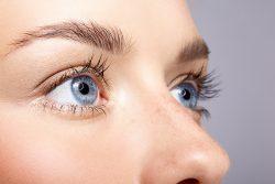 Что такое сетчатка глаза, ее строение и функции