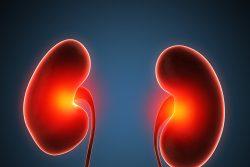 Апостематозный нефрит: особенности течения и лечения