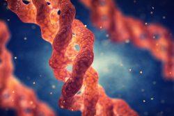 Хондрома: особенности течения, современные методы лечения