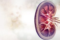 Медуллярная губчатая почка: почему возникает и как проявляется