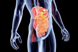 Компьютерная томография кишечника: показания, противопоказания, как проводят