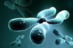 Синдром Шерешевского-Тернера: причины и симптомы