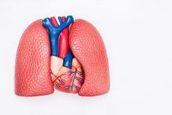 Абсцесс легкого: причины, симптомы, принципы лечения