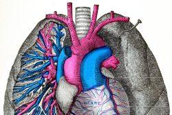 Артериовенозная аневризма легких: особенности течения, принципы лечения